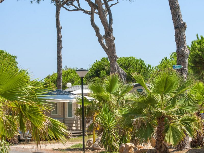Camping Eurosurf accommodatie
