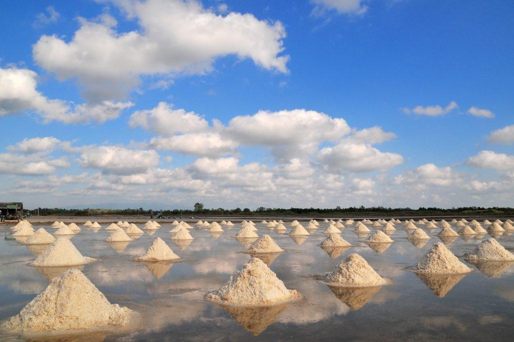 Trapani zout
